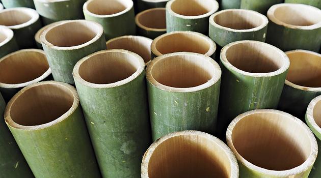 02_Bild_Landingpage-Bambus